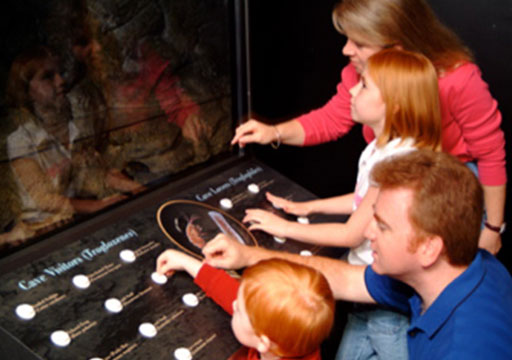 American Cave Museum-Cave Visitors Interactive Exhibit